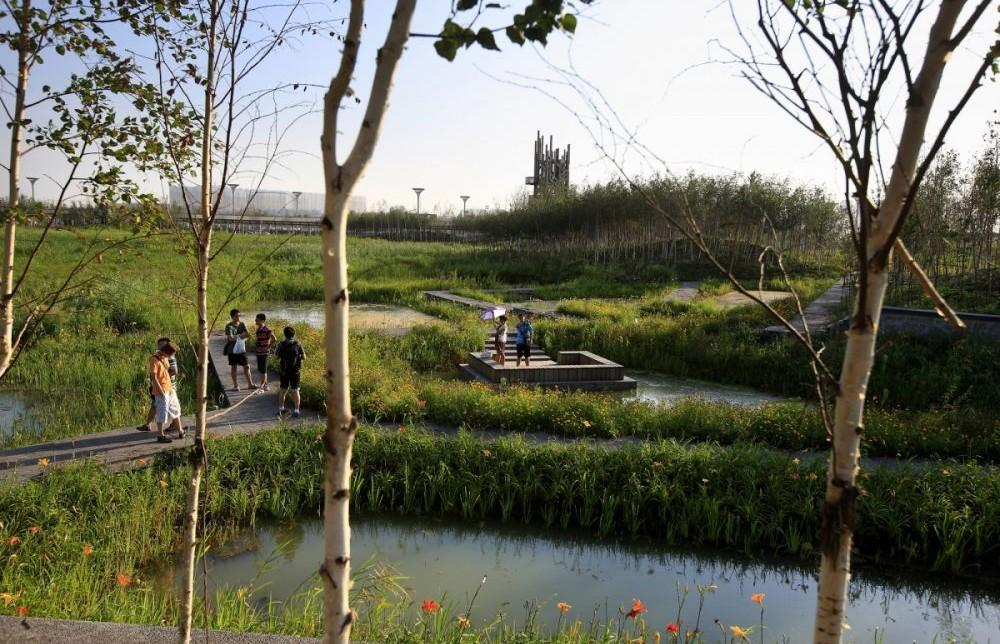 Qunli stormwater wetland park project architype for Stormwater pond design